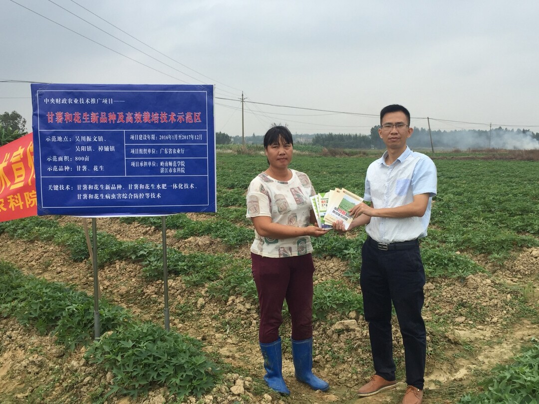 刘锴栋(右)在甘薯和花生新品种及高效栽培技术示范区.JPG